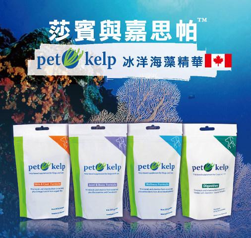 News_pet kelp