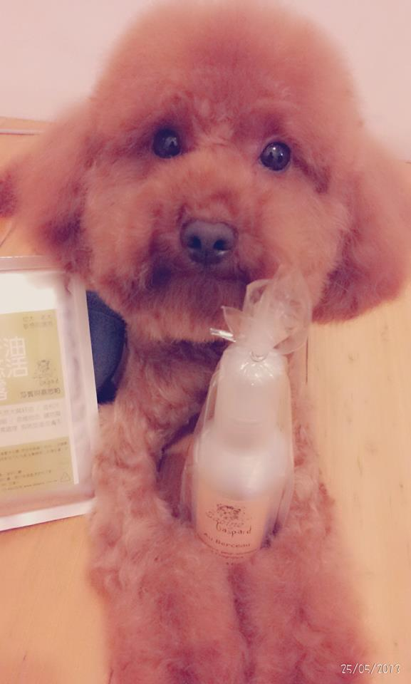 Testmonial_130525_Cookie麻