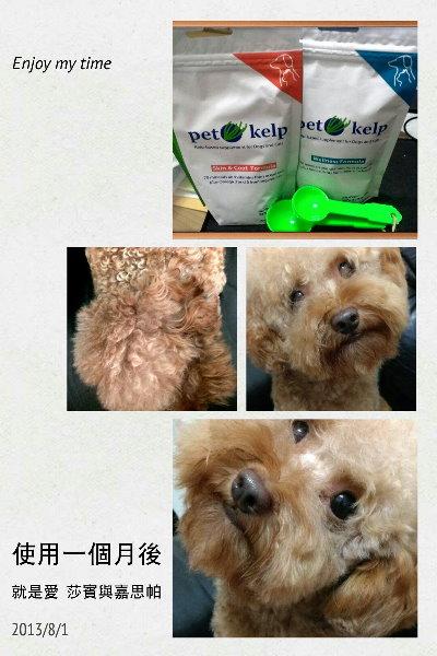 Testmonial_130802_豆豆麻2_lowRes